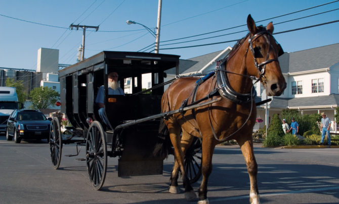 horse_and_buggy