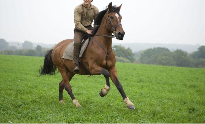 jeremy_irvine_war_horse_dreamworks_pictures