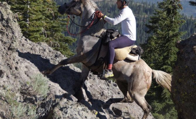 horse-climbing-rocks-tevis-cup