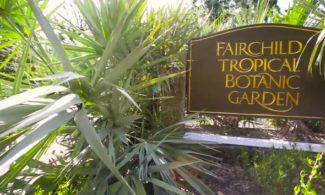 Fairchild Tropical Botanical Garden